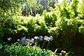Jardin botanique (9305446408).jpg