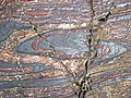 Jaspilite banded iron formation (Soudan Iron-Formation, Neoarchean, ~2.69 Ga; Stuntz Bay Road outcrop, Soudan Underground State Park, Soudan, Minnesota, USA) 31 (18603254854).jpg
