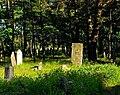 Jewish cemetery Otwock 10779425.jpg