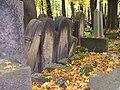 Jewish cemetery in Kraków (Kazimierz)16.jpg