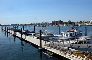 Kingsborough Community College - KBCC has programs in marine biology and maritime technology