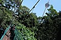 KL Forest Eco-Park Canopy Walk 5.jpg