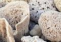 Kalymnos sponges 5.jpg