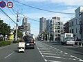 Kanagawa Route 2 -07.jpg