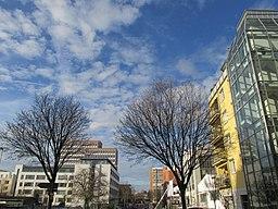 Ehrmannstraße in Karlsruhe