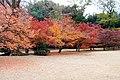 Katsura Rikyu (3264851030).jpg