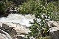 Kern River7.jpg