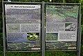 Keutschacher Seenlandschaft, Kärnten.jpg