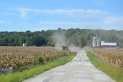 Corn harvest on Kinsey Road