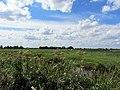 Kippenkade, Oukoop-Reeuwijk 03.jpg