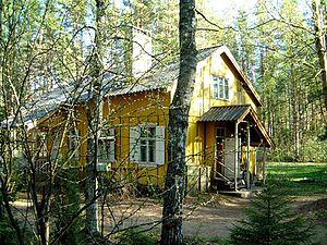 Komarovo, Saint Petersburg - Komarovo, one of standard houses manufactured in Finland