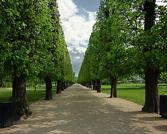 Rosenborg Castle Gardens - One of the avenues