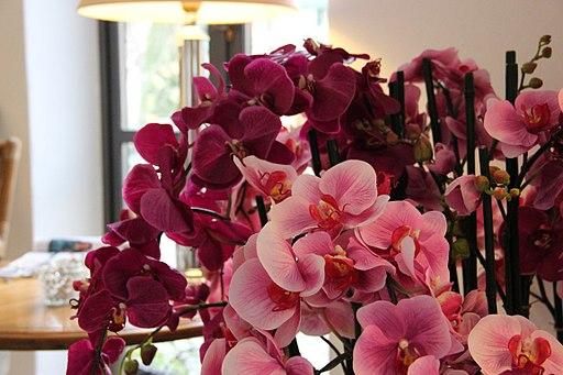 Kunstige Orkideer