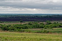 Kursk Oblast P5090444 2200.jpg