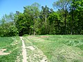 Líšeň, cesta za hřbitovem-alibaba - panoramio.jpg