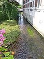La Nère à Aubigny-sur-Nère (2).jpg