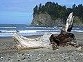 La Push driftwood beachlog NPS Photo (17125861008).jpg