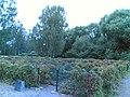 Labyrintti - panoramio.jpg