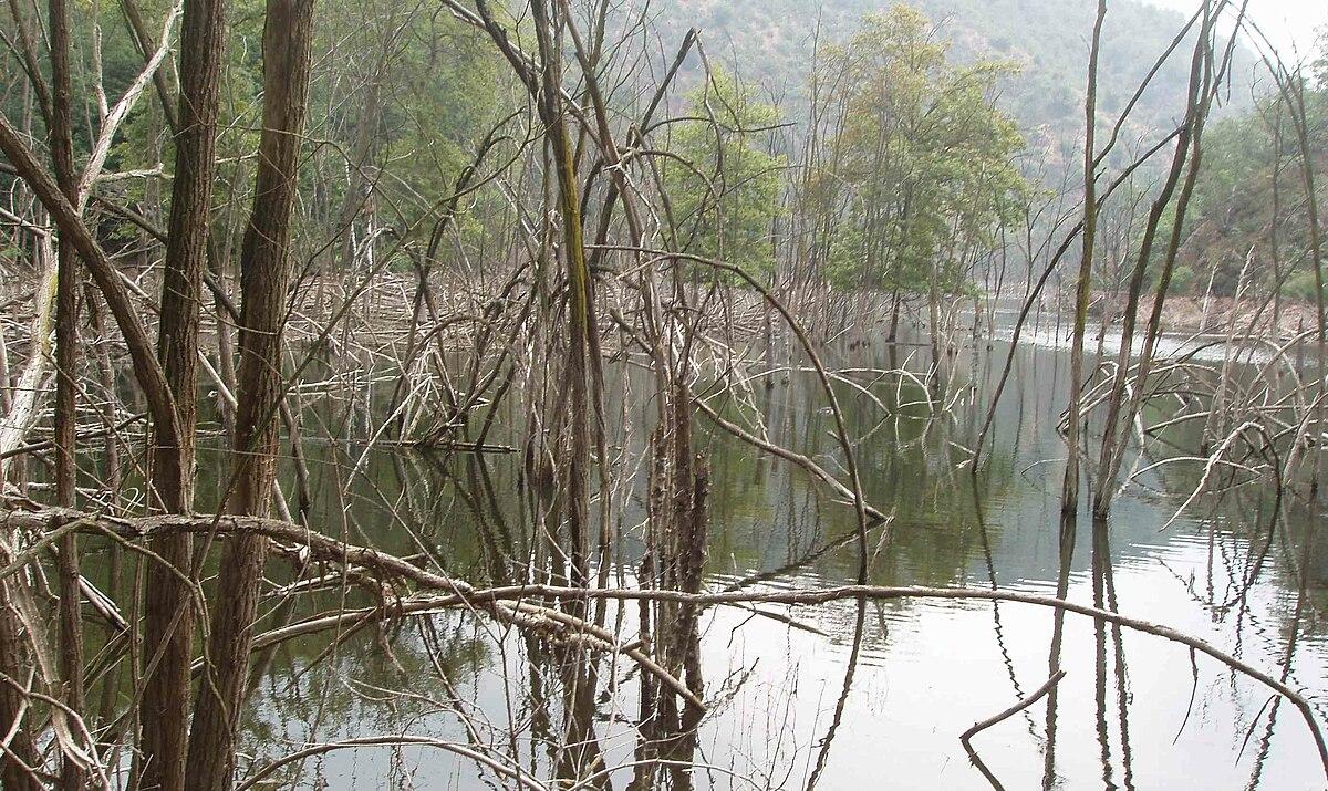 Lago ravasanella wikipedia for Lago n
