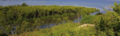 Lagoon with fringing mangroves.png