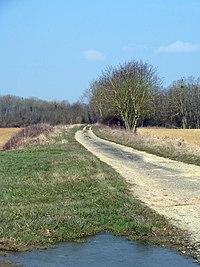 Laimont Villers-aux-Vents (55 Meuse) voie romaine Reims Toul.jpg