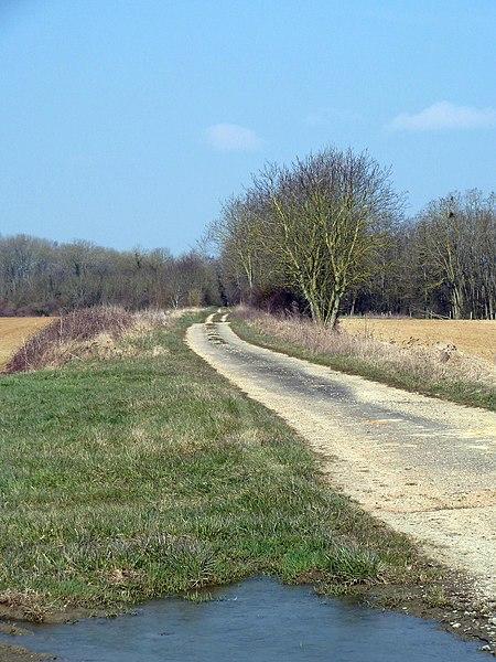 A la limite entre les communes de Laimont et Villers-aux-Vents (55 Meuse) l'ancienne voie romaine Reims Toul à l'endroit où elle rejoint l'actuelle route départementale D75.
