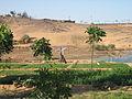 Lake Nasser (2427635807).jpg