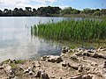 Lake North of Otranto enroute to Lecce - panoramio.jpg