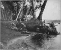 Landing operations on Rendova Island, Solomon Islands, 30 June 1943. Attacking at the break of day in a heavy... - NARA - 520619.tif