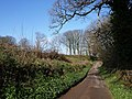 Lane from Bickleigh Farm - geograph.org.uk - 1242066.jpg