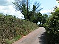 Lane near Wyke Cross - geograph.org.uk - 1393424.jpg