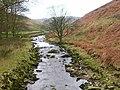 Langden Brook - geograph.org.uk - 1103575.jpg