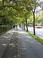 Langelandsgade (uni).jpg