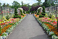 "Le ""Victorian Walled Garden (parc Bellahouston, Glasgow) (3810723675).jpg"