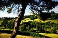 Le colline - panoramio.jpg