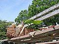 Le jardin des plantes (Le Voyage, Nantes) (9224130098).jpg