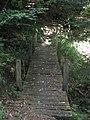 Le petit pont de bois - panoramio (1).jpg