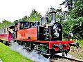 Le train touristique. (2).jpg