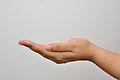 Left Hand - Kolkata 2011-04-20 2350.JPG