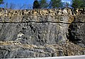 Limestones (Slade Formation, Upper Mississippian; Rt. 1274-Rt. 801 outcrop, southwest of Morehead, Kentucky, USA) 3 (39653958313).jpg