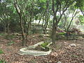 Lingshan Islamic Cemetery - tomb - DSCF8365.JPG