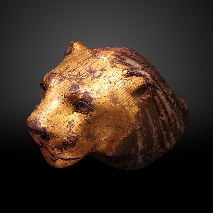 Lion head-E 2558
