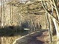Llangollen Canal at Ellesmere (Salop) - geograph.org.uk - 52017.jpg