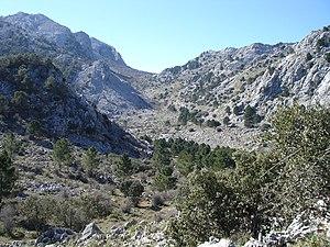 Llanos del Endrinal.jpg