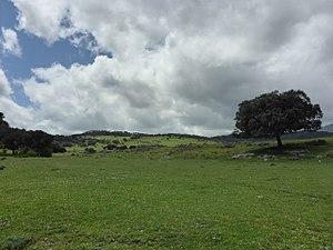 Llanos del Republicano - P1230169.jpg