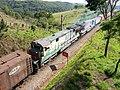 Locomotivas no meio do comboio que passava sentido Guaianã na Variante Boa Vista-Guaianã km 160 em Mairinque - panoramio (1).jpg