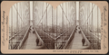Looking across Brooklyn Bridge toward New York, N.Y., U.S.A, from Robert N. Dennis collection of stereoscopic views.png