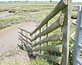 Looking across Ham Marshes by a gate on the Saxon Shore Way - geograph.org.uk - 1353977.jpg