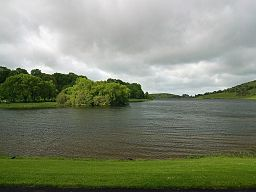 none Nordenden av Lough Gur.