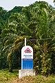 Lumadan Sabah Boundary-Stone-of-Lumadan-Estate-01.jpg